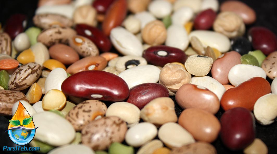 beans-9476