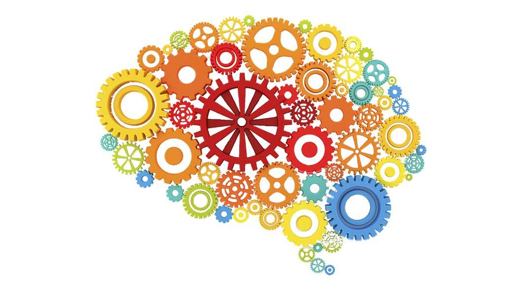 brain2.jpg94712