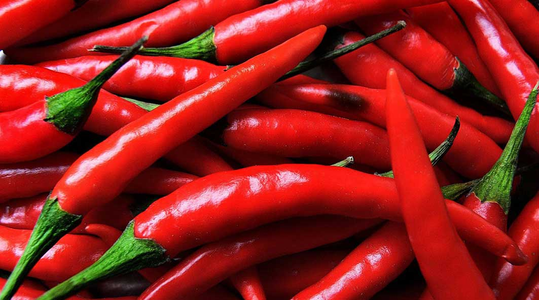 chili-pepper9477