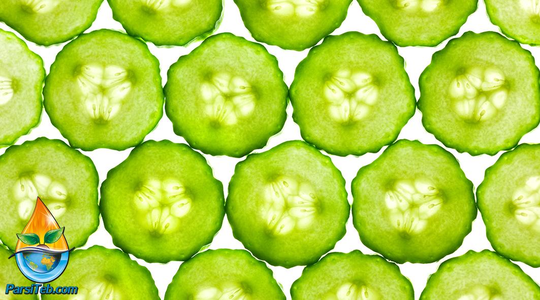 cucumber-9476