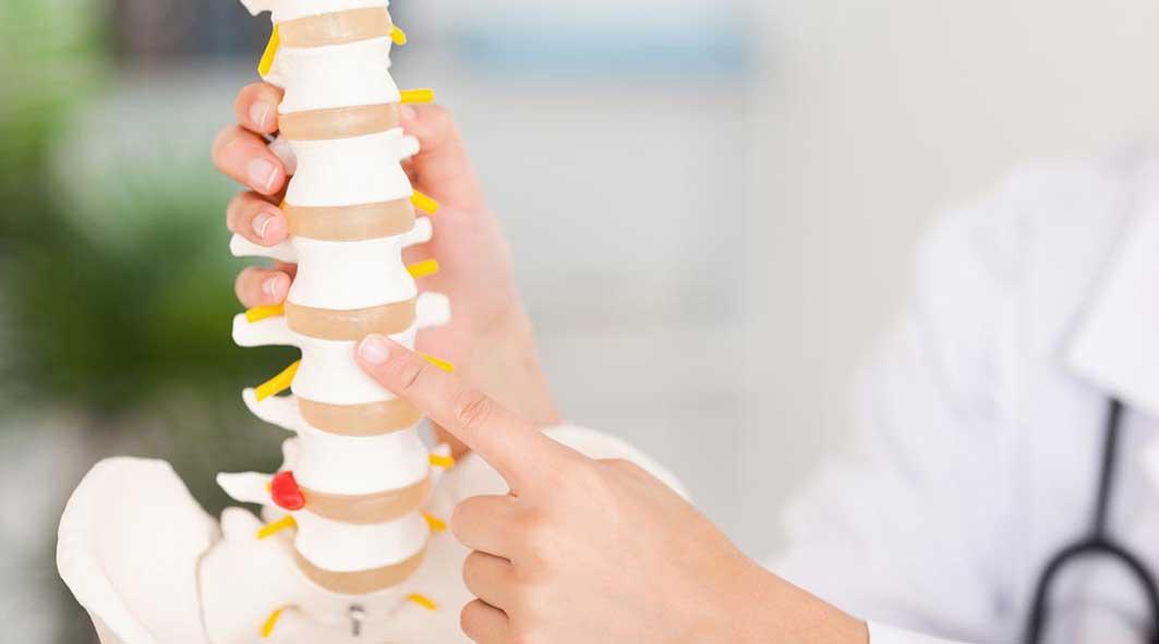 doc-spine.jpg94713
