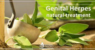 Genital Herpes natural treatment
