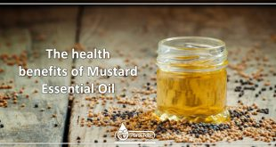 The health benefits of Mustard Essential Oil