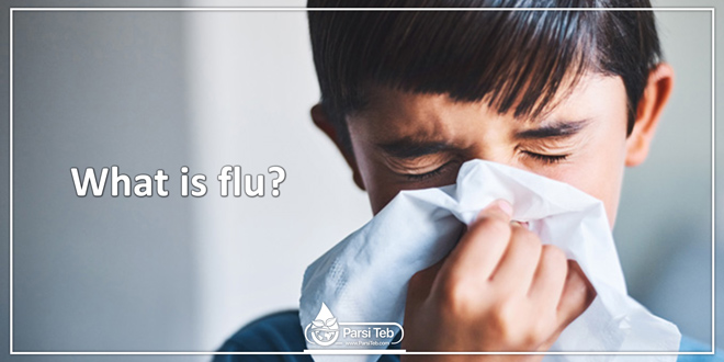 What is flu?