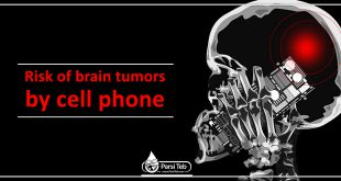 Risk of brain tumors by cell phone
