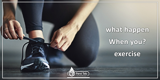 what happen When you exercise ?