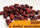 Jujube in herbal medicine