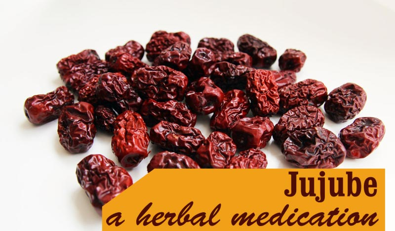 Jujube a herbal medication