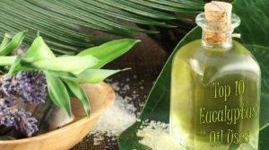 top-10-eucalyptus-oil-uses