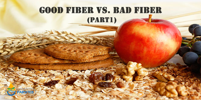 Good fiber Vs. Bad fiber (Part 1)