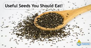 Useful Seeds You Should Eat!