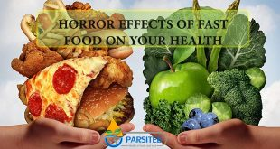 Horror Effects of Fast Food on Your Health