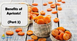 Benefits of Apricots! (Part 2)