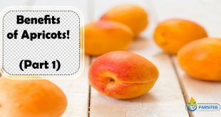 Benefits of Apricots! (Part 1)