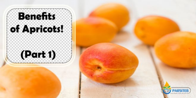 Benefits of Apricots! (Part 1)