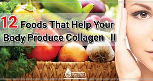12 Foods That Help Your Body Produce Collagen (II)
